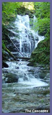 The Cascades Trail Waterfall North Adams Ma